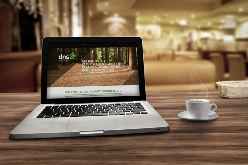 DNS Website Laptop